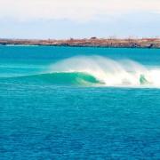 Surfen Galapagos 2
