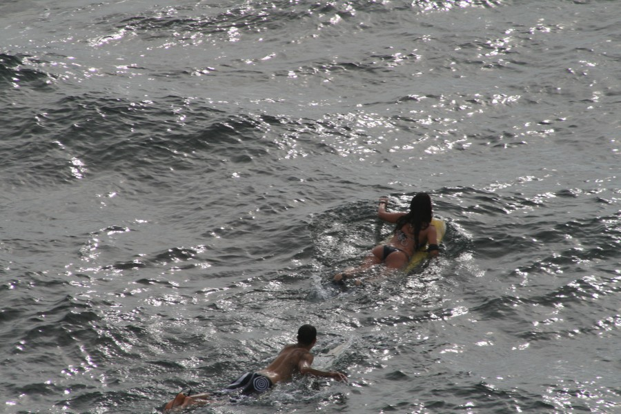 surf surfing wellenreiten lineup