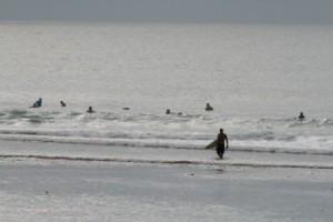 lineup surf surfer wellenreiten