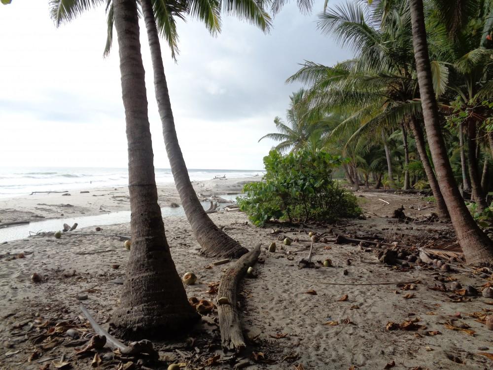 Reisen in Costa Rica Santa Teresa