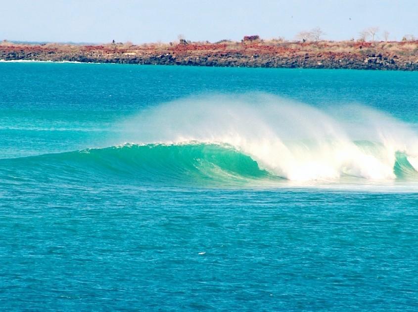 surfing galapagos