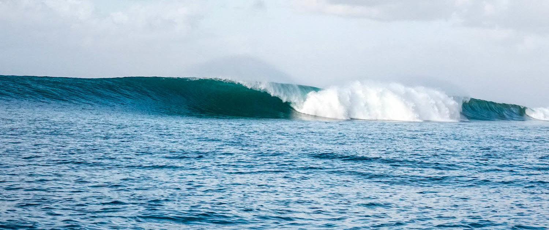 surfen und studieren